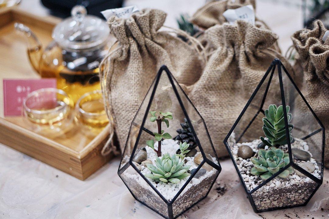 DIY微型玻璃缸花园 - 居家活动盒