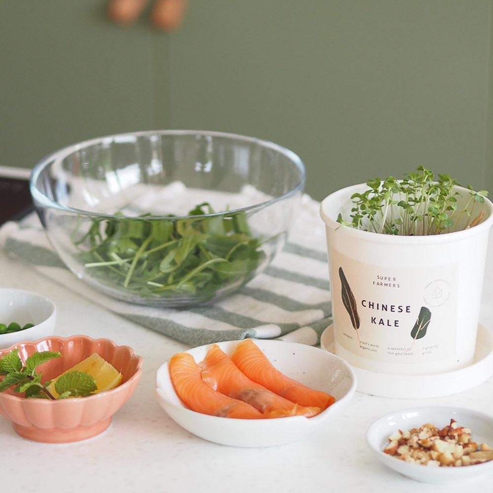 室内种菜 -居家活动盒