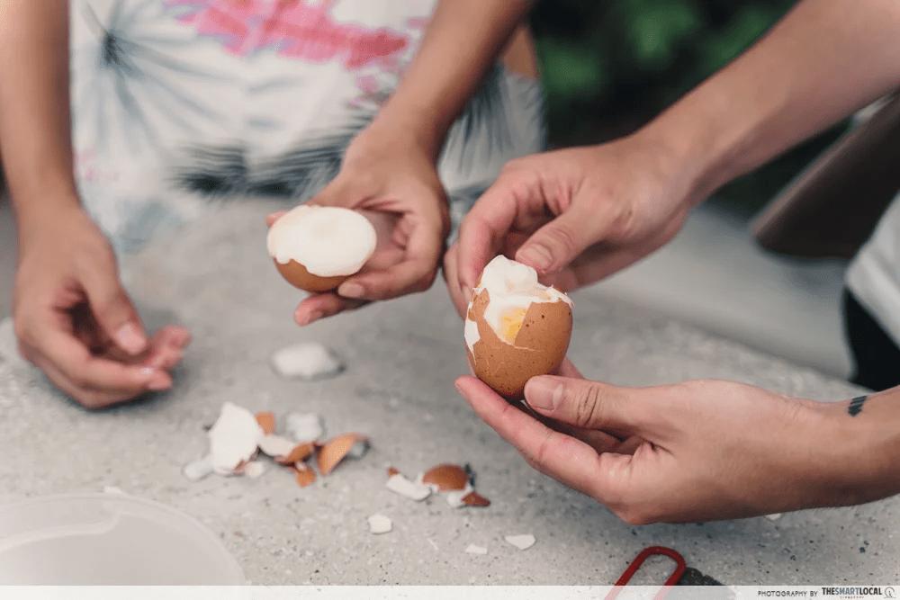 摆放蛋壳 - 清洁妙招