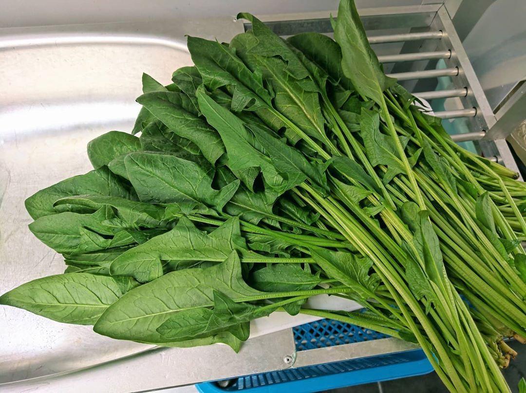 菠菜 - 保质期最长的蔬菜